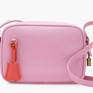 J.Crew Mini Signet Bag in Peppermint Ice
